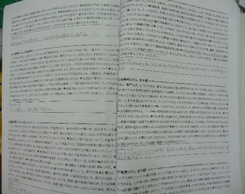 P1070675(21).JPG